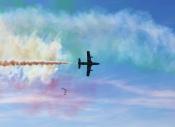Air show Tricolore 2